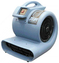 Where to find CARPET DRYER, 3 SPEED in Plainview