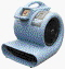 Where to rent CARPET DRYER, 3 SPEED in Plainview TX